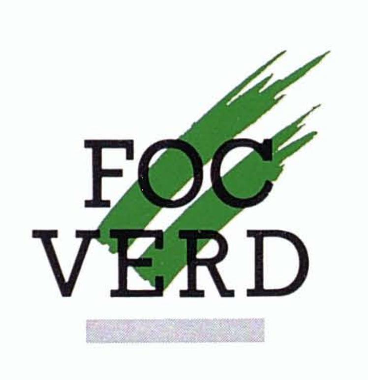 """1991 – 1a Festa """"Foc Verd"""""""